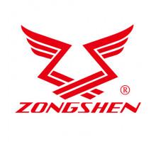 Двигатель бензиновый Zongshen ZS 190 FA2